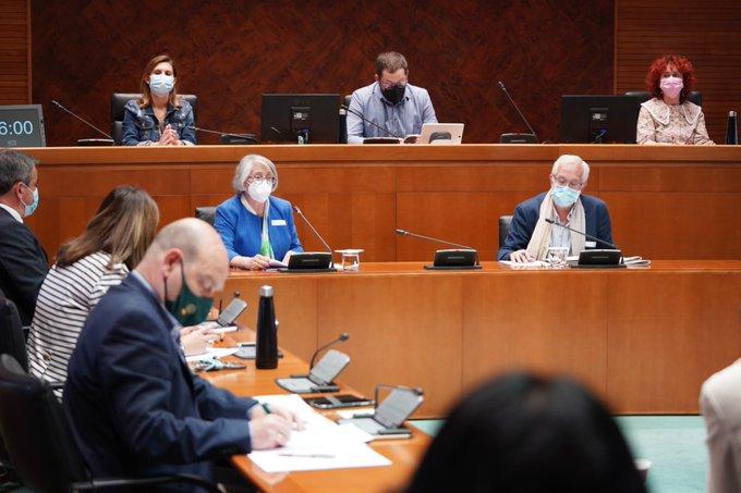 Consuelo Miqueo y José Antonio Rovida, de DMD Aragón, comparecen en la Comisión de Participación Ciudadana de las Cortes de Aragón